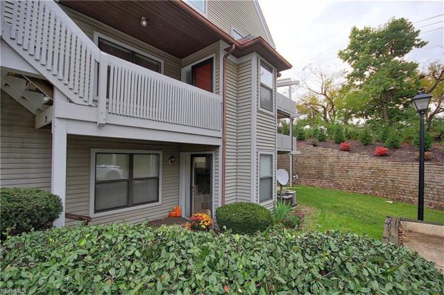 23 Forest Cove Dr #14, Akron, OH 44319 (MLS #4076471) :: Tammy Grogan and Associates at Cutler Real Estate