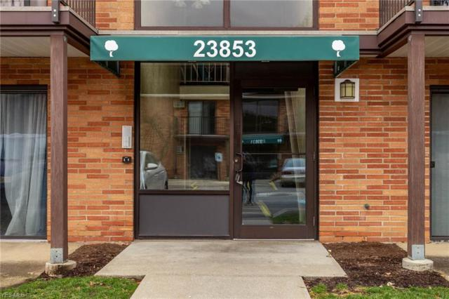 23853 David Dr #206, North Olmsted, OH 44070 (MLS #4076880) :: Ciano-Hendricks Realty Group