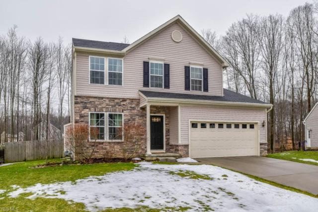 3860 Willow Way, Kent, OH 44240 (MLS #4076902) :: RE/MAX Trends Realty