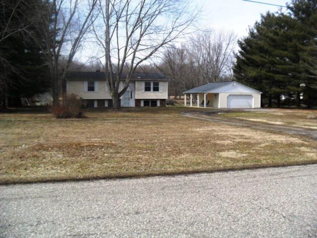 6059 Mc Mullen Allen Rd, Newton Falls, OH 44444 (MLS #4077524) :: RE/MAX Edge Realty