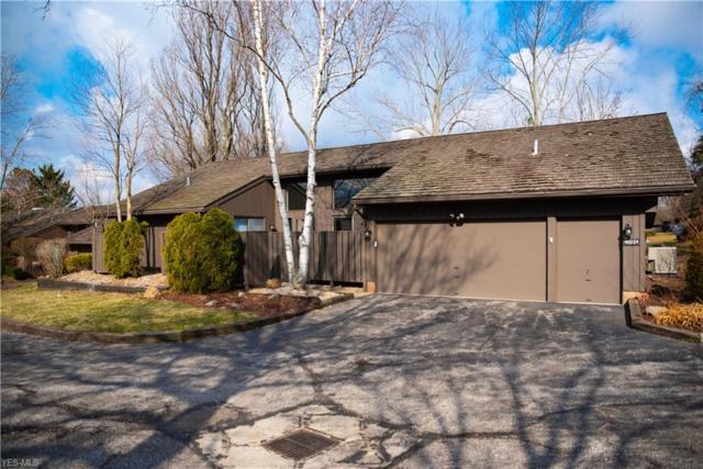 450-24 Willow Cir, Aurora, OH 44202 (MLS #4077529) :: Ciano-Hendricks Realty Group