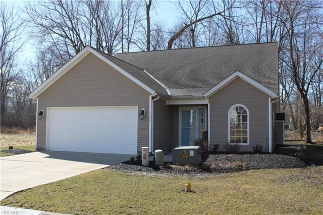 528 Cape St, Painesville, OH 44077 (MLS #4077638) :: Ciano-Hendricks Realty Group