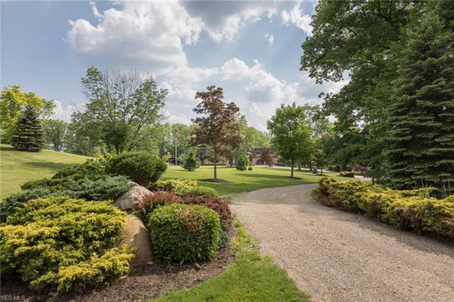 10785 Rockwood Drive, Kirtland, OH 44094 (MLS #4077889) :: RE/MAX Trends Realty