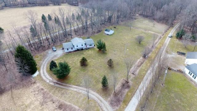12794 State Route 700, Hiram, OH 44234 (MLS #4078033) :: RE/MAX Edge Realty