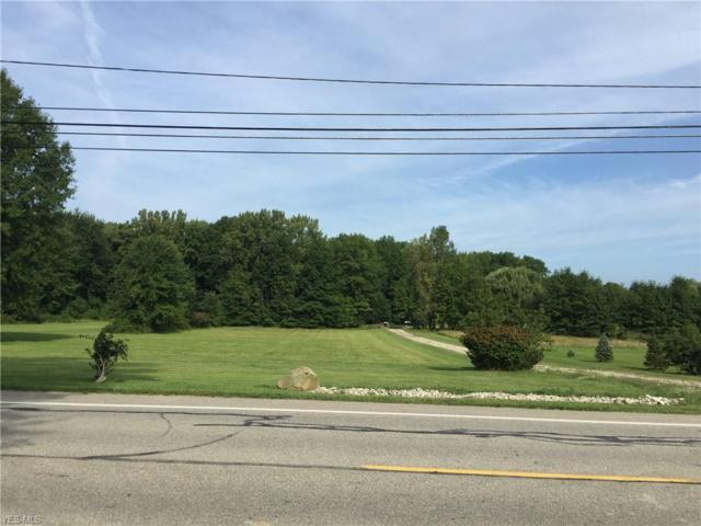 Chestnut Ridge Rd, North Ridgeville, OH 44039 (MLS #4078263) :: RE/MAX Edge Realty
