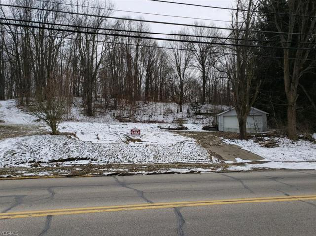 317 State St, Wadsworth, OH 44281 (MLS #4079177) :: RE/MAX Edge Realty