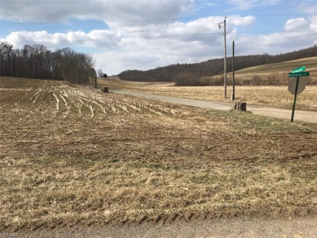 Winfield Strasburg Rd, Dover, OH 44622 (MLS #4079446) :: RE/MAX Edge Realty