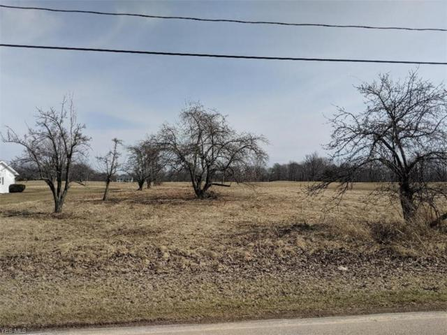 Lenox New Lyme Road, Jefferson, OH 44047 (MLS #4079538) :: The Crockett Team, Howard Hanna