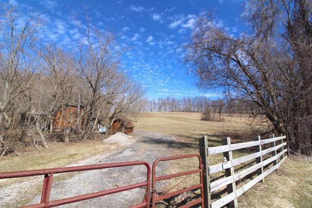 52601 Schroder Rd, Jacobsburg, OH 43933 (MLS #4079559) :: RE/MAX Edge Realty