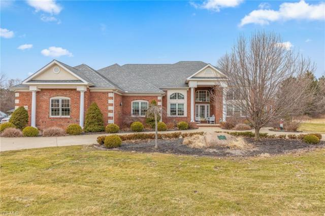 10598 Blueberry Hill Dr, Kirtland, OH 44094 (MLS #4079663) :: RE/MAX Edge Realty