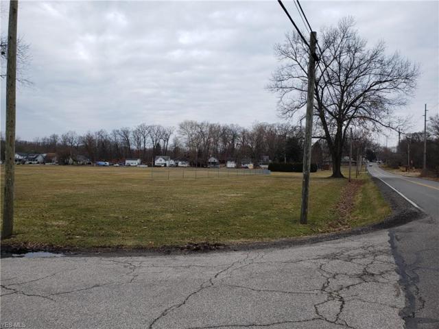 VL Brady Lake Rd, Kent, OH 44240 (MLS #4080153) :: RE/MAX Trends Realty