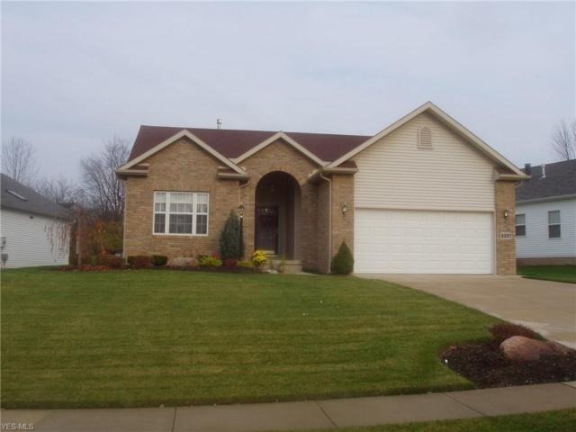 8020 Lake Rd, Chippewa Lake, OH 44273 (MLS #4080622) :: RE/MAX Valley Real Estate