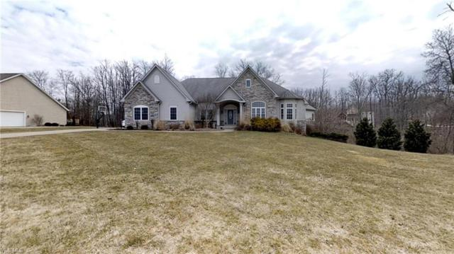 4165 Maggie Marie Boulevard, Medina, OH 44256 (MLS #4081191) :: The Crockett Team, Howard Hanna