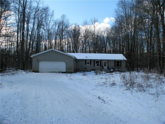 4910 New Hudson Rd, Orwell, OH 44076 (MLS #4082213) :: RE/MAX Trends Realty