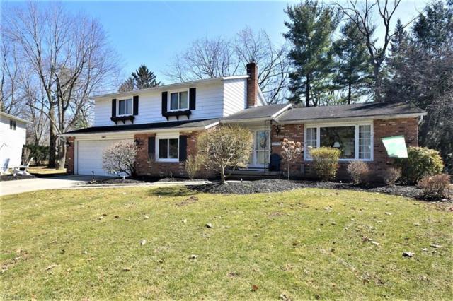 1047 Linden Ln, Lyndhurst, OH 44124 (MLS #4082465) :: RE/MAX Valley Real Estate