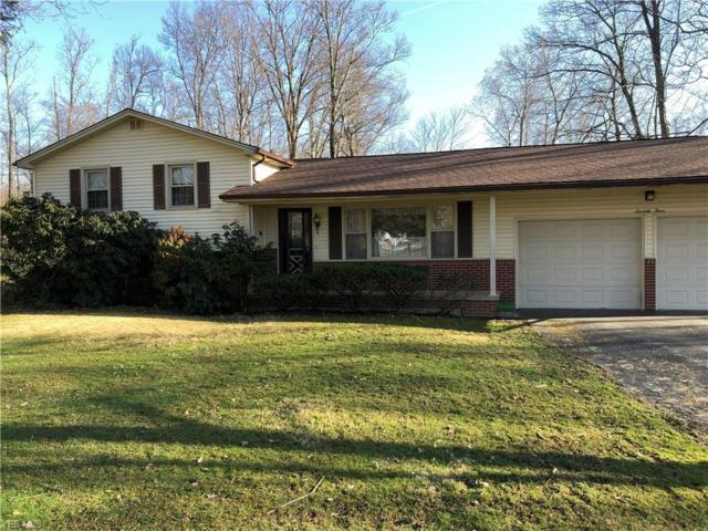 73 Woodland, Columbiana, OH 44408 (MLS #4082478) :: RE/MAX Valley Real Estate