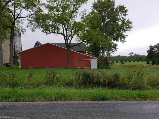 9325 Slagle Rd, Garrettsville, OH 44231 (MLS #4082598) :: RE/MAX Valley Real Estate