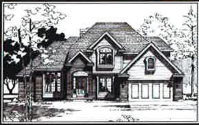 VL Brianna Court, Ashtabula, OH 44004 (MLS #4082623) :: RE/MAX Valley Real Estate