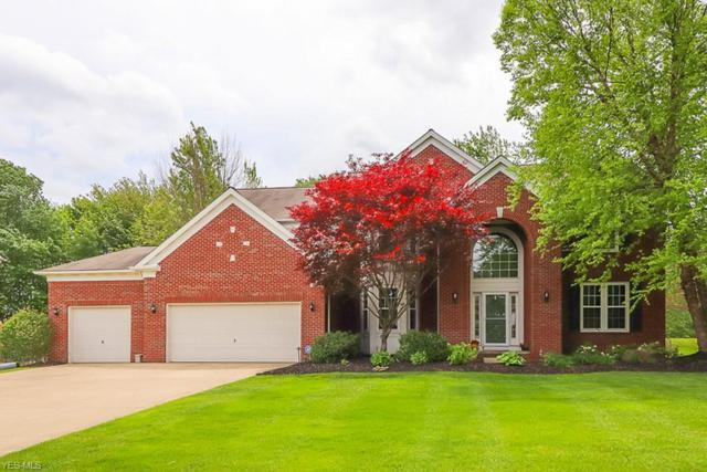 3035 Alling Dr, Twinsburg, OH 44087 (MLS #4082765) :: RE/MAX Pathway