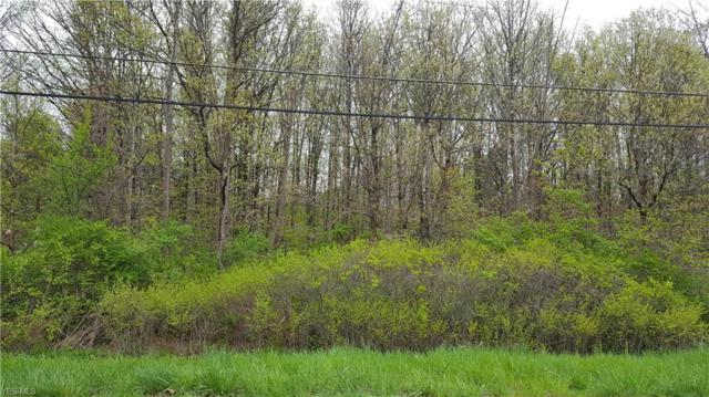 3891 #4 River Rd, Perry, OH 44081 (MLS #4083378) :: RE/MAX Valley Real Estate