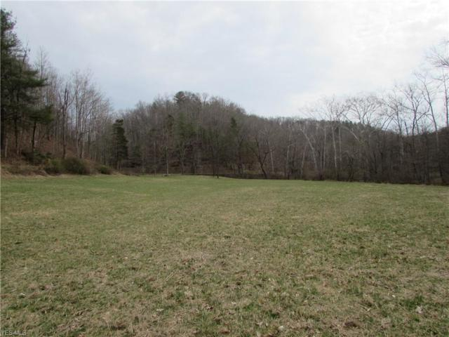 Bean Ridge Rd, Smithville, WV 26177 (MLS #4083813) :: RE/MAX Valley Real Estate