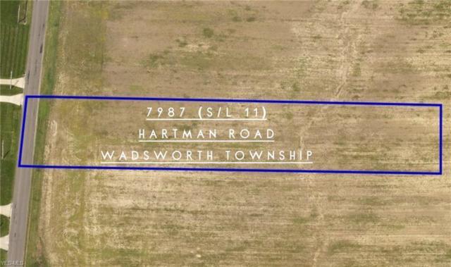 7987 Hartman Road, Wadsworth, OH 44281 (MLS #4084153) :: The Crockett Team, Howard Hanna