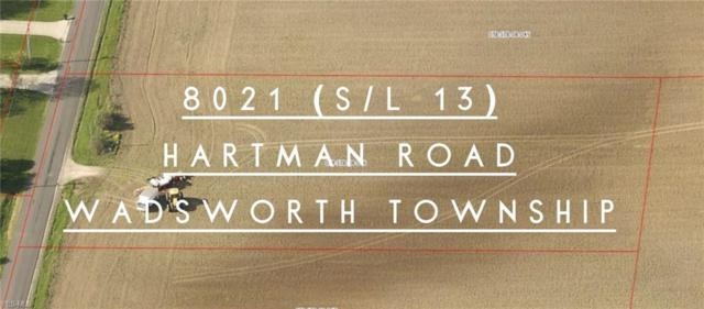 8021 Hartman Road, Wadsworth, OH 44281 (MLS #4084156) :: The Crockett Team, Howard Hanna