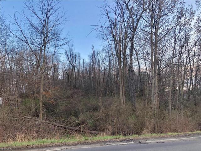 Mill St SW, Canton, OH 44706 (MLS #4084941) :: RE/MAX Valley Real Estate