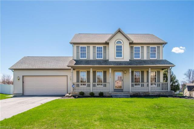 6399 E Harvest Ridge Dr, Austintown, OH 44515 (MLS #4084946) :: RE/MAX Valley Real Estate