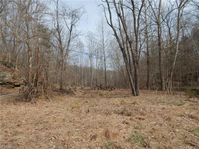 C. Rd. 17/5, Harrisville, WV 26362 (MLS #4085031) :: RE/MAX Valley Real Estate