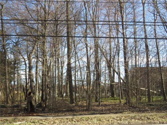 V/L Electric Blvd, Avon Lake, OH 44012 (MLS #4085585) :: RE/MAX Trends Realty