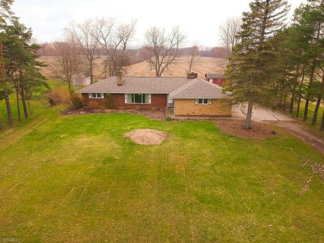 13660 Durkee Rd, Grafton, OH 44044 (MLS #4085602) :: RE/MAX Valley Real Estate