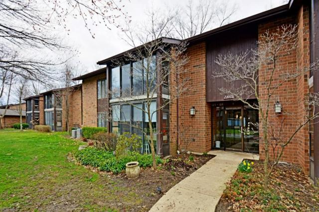 22968 Maple Ridge Rd #205, North Olmsted, OH 44070 (MLS #4085647) :: RE/MAX Trends Realty