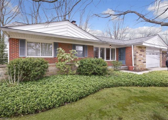 1896 Bremerton Rd, Lyndhurst, OH 44124 (MLS #4085722) :: RE/MAX Valley Real Estate