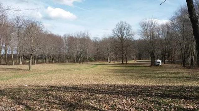 11500 Detwiler Rd, Columbiana, OH 44408 (MLS #4085812) :: RE/MAX Valley Real Estate