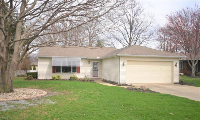 4287 Ford Ln, Vermilion, OH 44089 (MLS #4085909) :: Ciano-Hendricks Realty Group