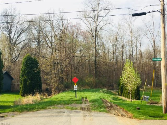 Chrysann Ave, Girard, OH 44420 (MLS #4086195) :: RE/MAX Valley Real Estate