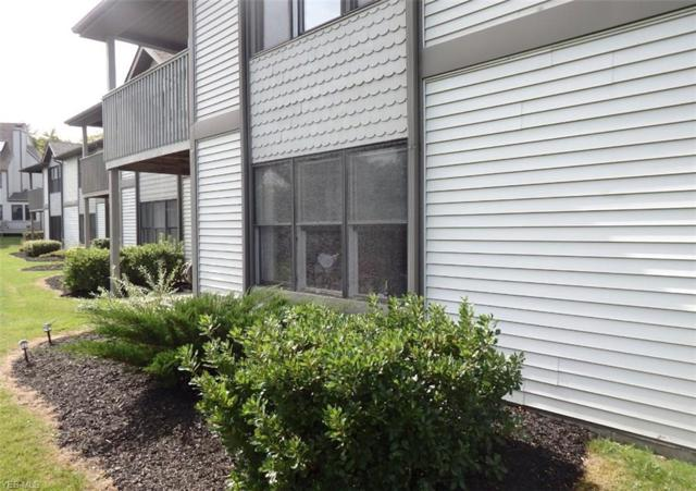 5237 Lake Rd W #1015, Ashtabula, OH 44004 (MLS #4086211) :: Ciano-Hendricks Realty Group