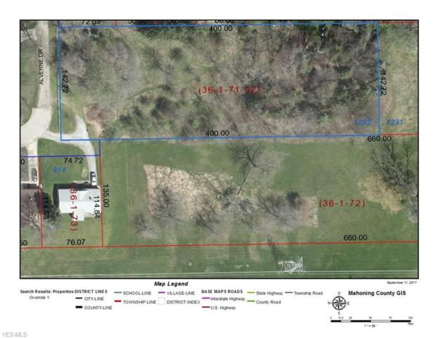 VL Alverne Dr, Poland, OH 44514 (MLS #4086293) :: Ciano-Hendricks Realty Group