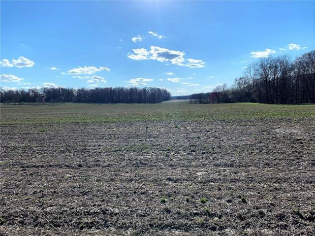 S/L 3A Beach Rd, Wadsworth, OH 44281 (MLS #4086494) :: Ciano-Hendricks Realty Group