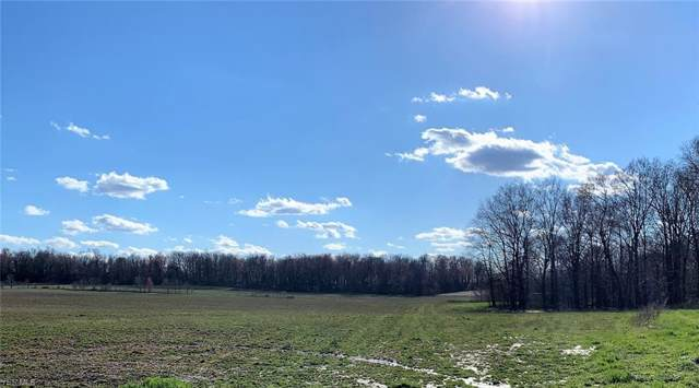 S/L 3C Beach Rd, Wadsworth, OH 44281 (MLS #4086754) :: Keller Williams Chervenic Realty