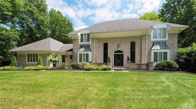 7873 Memory Ln, Canfield, OH 44406 (MLS #4086979) :: Ciano-Hendricks Realty Group