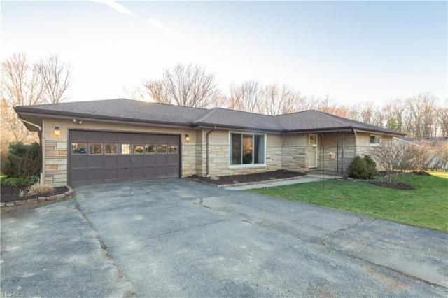 10466 Briar Hill Dr, Kirtland, OH 44094 (MLS #4087998) :: The Crockett Team, Howard Hanna