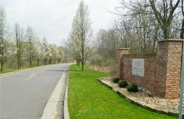Polo Pl, Poland, OH 44514 (MLS #4088298) :: RE/MAX Valley Real Estate