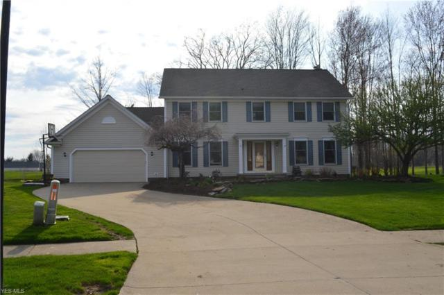 10296 Merriam Ln, Twinsburg, OH 44087 (MLS #4088356) :: The Crockett Team, Howard Hanna