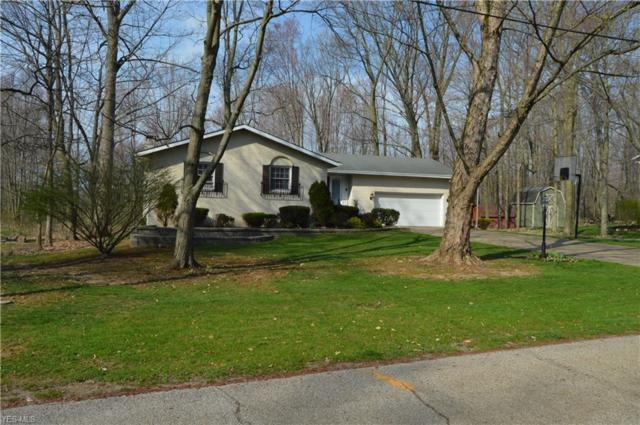 419 Whittlesey Dr, Tallmadge, OH 44278 (MLS #4088527) :: Keller Williams Chervenic Realty