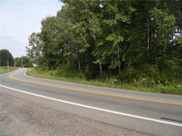 Brady Lake Rd, Ravenna, OH 44266 (MLS #4088666) :: Keller Williams Chervenic Realty