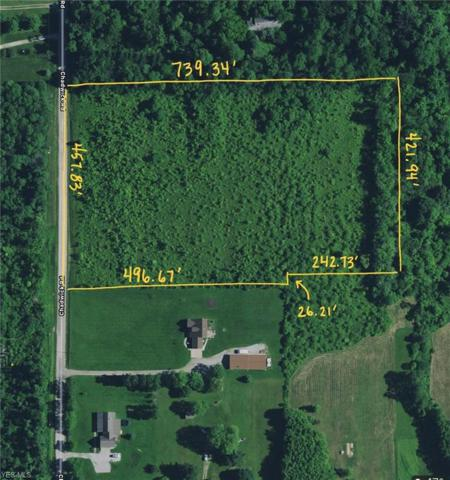 5270 Chadwick Rd, Leroy, OH 44077 (MLS #4088923) :: The Crockett Team, Howard Hanna