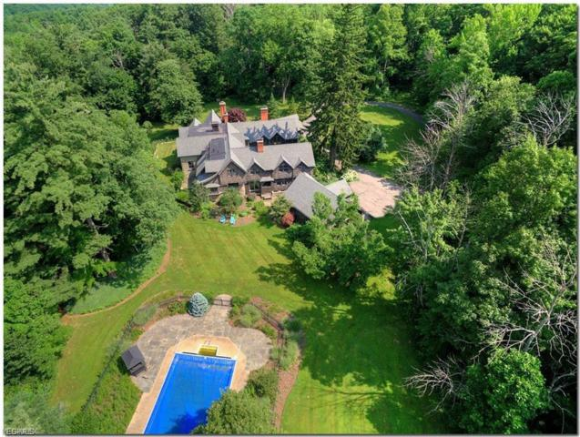 10095 Little Mountain Rd, Chardon, OH 44060 (MLS #4088947) :: The Crockett Team, Howard Hanna