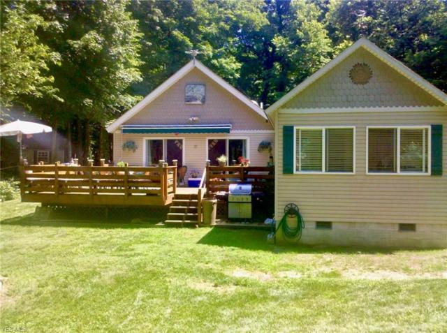 687 New Colony, Put-in-Bay, OH 43456 (MLS #4089070) :: RE/MAX Valley Real Estate